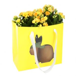 Sacos para Plantas Pascoa Amarelo 24*11*20cm| CX