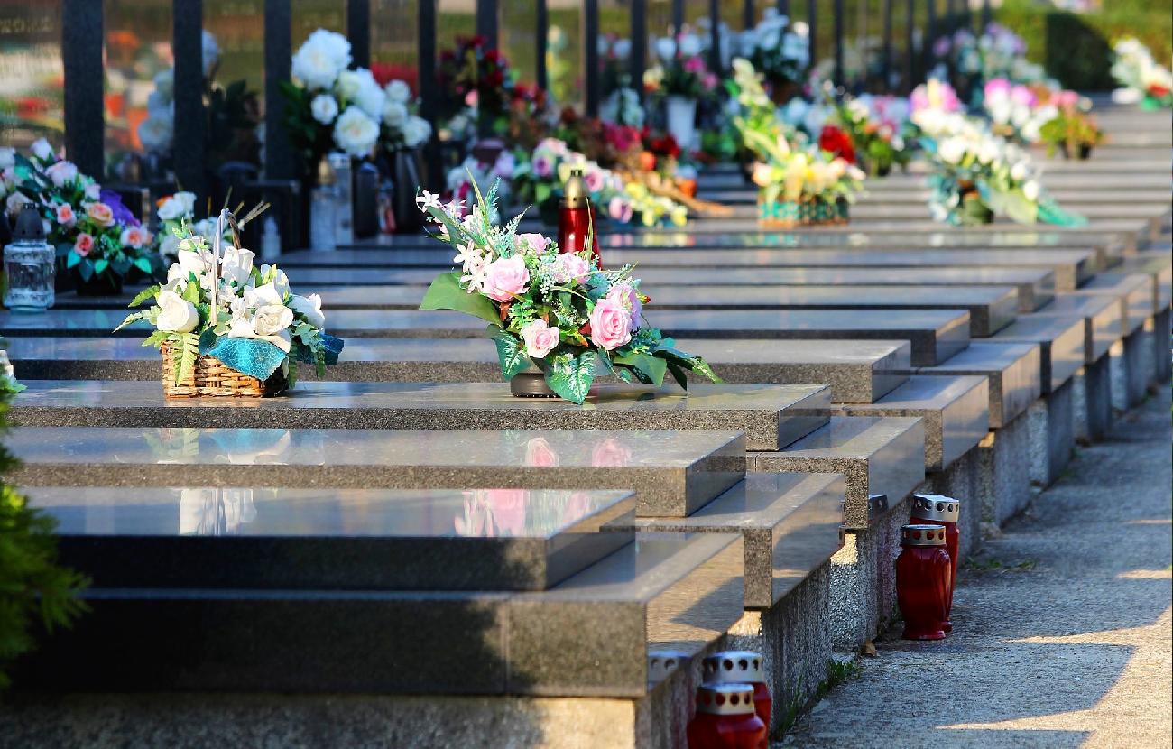 Todos os Santos: flores para lembrar os que já partiram